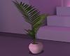 neon pink plant