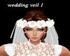 wedding veil 1