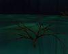 !Black Bayou Dead Tree