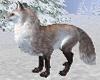 """Rusco"" The Fox"