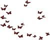 Ruby Butterflies