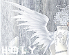 Silver Gray Soft Wing