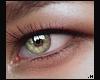 Grace Eye \ Hyra