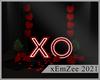 MZ - XO Photoroom