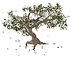 Elven Forest Tree