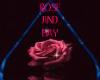 ROSE&BAY'S PIC