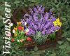 Garden Flowerbox