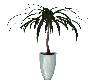 (V) Plant 4