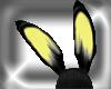[NFA]bunny yellow