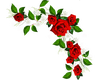 Flowers Upper Right