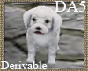 (A) Maltese Puppy