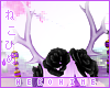 [HIME] Laven Antlers