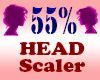 Resizer 55% Head