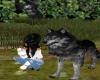 Wolf Pet M/F