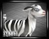 e Zebra Goat