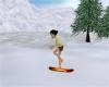 Winter Snow Board