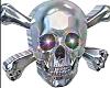 Metal Skull n Bones