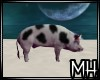 [MH] DME Animated Pig