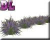 DL: Lavender Row
