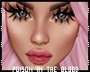 ** Z13 Lips+Lash+Brows+E