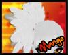 -DM- Bald Eagle Feathers