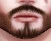 Brown beard, moustache