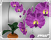 !3D orchid plant purple