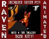 TIGER SHOULDER KITTY!