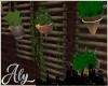 Loft Living Wall Plants