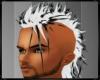 *Ky* White Black Mohawk
