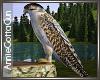 Falcon  (static)