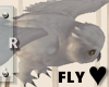 Flying Owl [Derivable]