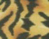 *R*Tiger Top