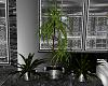 ~D~ Ex-Lux Plant Set V.2