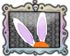 [KKx] Purple Bunny Ears