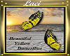 Yellow Butterflies~L