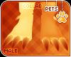 [Pets] Fumiko | feet