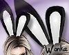 W° Sexy Bunny Ears