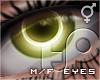 TP 20/20 - Olive