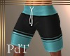 PdT Aqua&Blk Boardies4 M