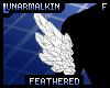 FeatheredBicepTuftF