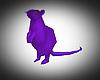 Purple Rat (Animated)