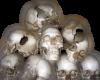 Pile o' skulls