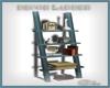 *C* Blue Ladder Shelves