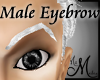 MM~ Eyebrow Silver Male