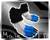 (M) BluBlkWht A.Paws[FT]