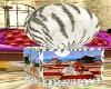 alby tiger radio