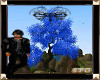 ||SPG||Magical Three 2