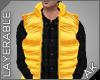 ~AK~ Ski Vest: Orange