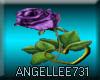 Purple Rose Gold Heart L